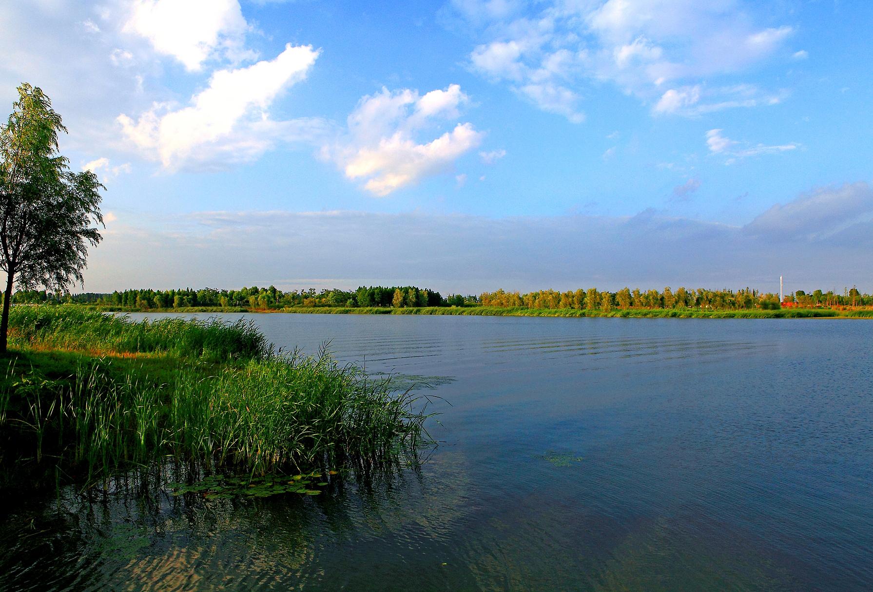 21大丰东方湿地公园IMG_2530.JPG