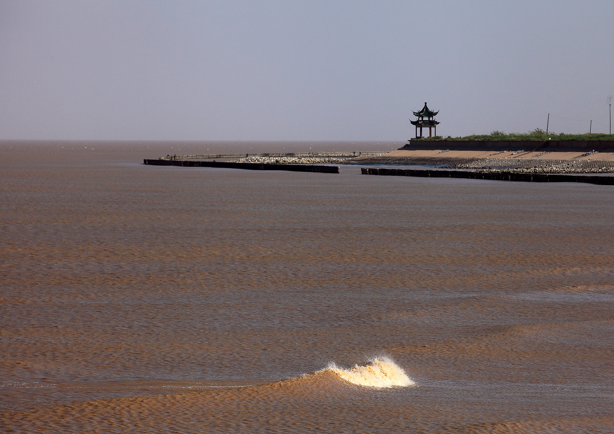93古黄河入海口IMG_0123.JPG