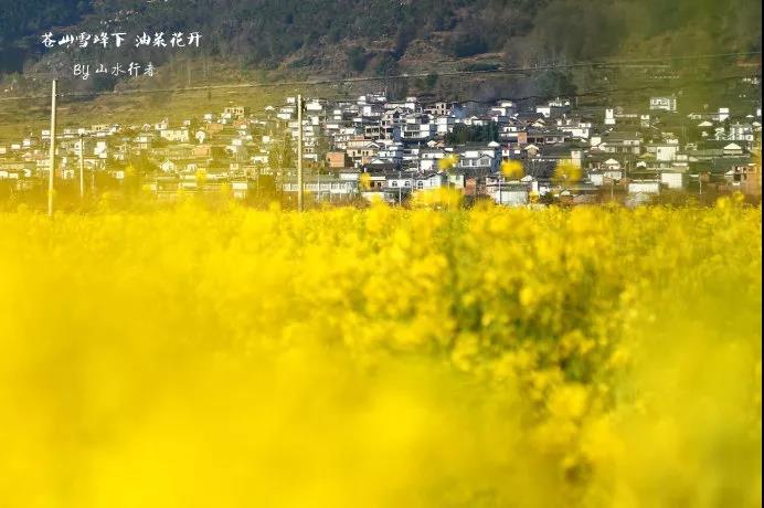 微信图片_31.jpg