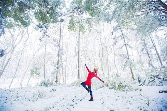 大雪纷飞竟自由
